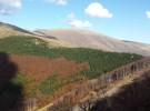 Stara planina – neotkriveni biser Srbije